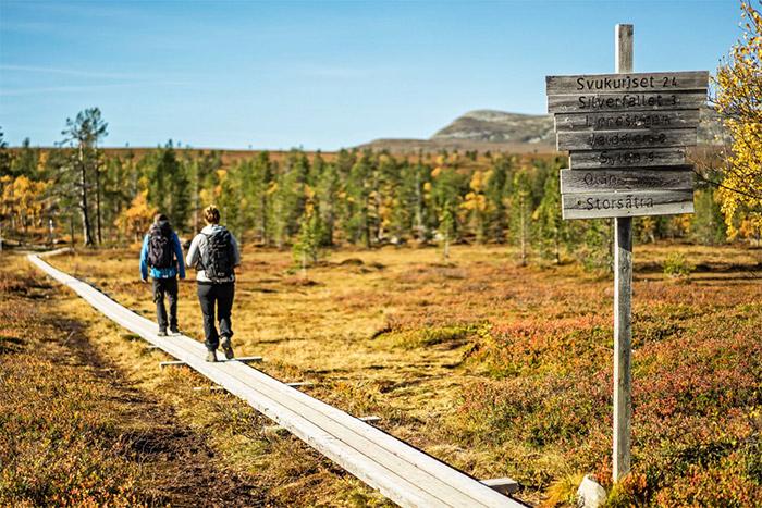 Upptäck vår vackra natur med en vandringsresa