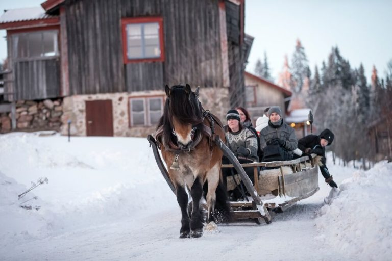 Vinterupplevelser i Sverige