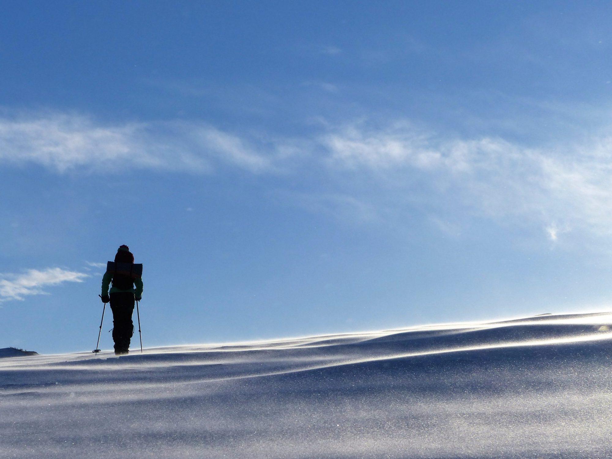 Skidor i Sverige