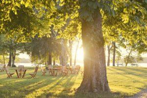 Vandra i Sverige – upplevelser du inte får missa