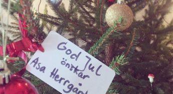 Erbjudande till dig med Ica-kort - Fira jul på Asa Herrgård