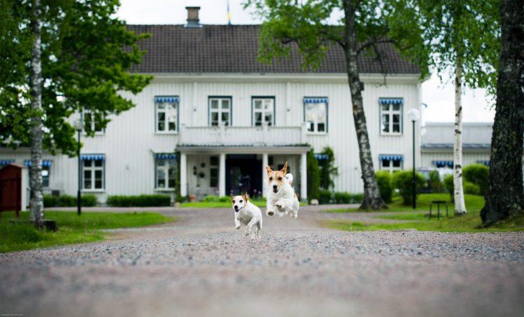 Åk till Ulvsby Herrgård på er nästa weekendresa